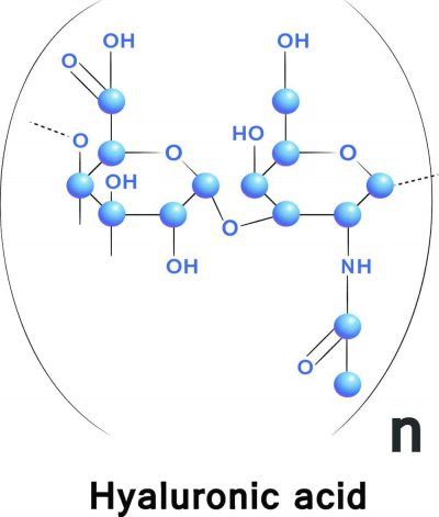 Hyaluronic Acid3 (1)